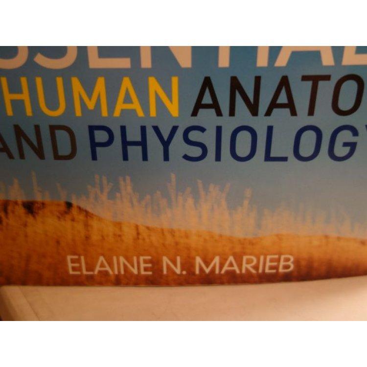 human anatomy and physiology elaine marieb 10th edition pdf