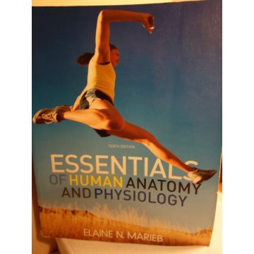 Essentials of Human Anatomy and Physiology  E. Marieb