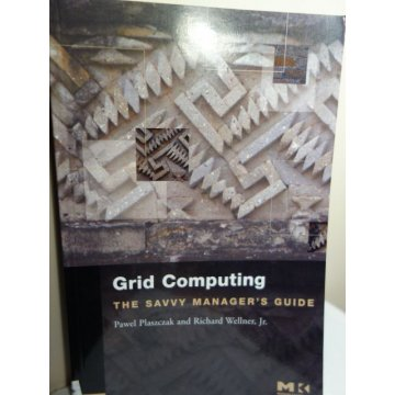 Grid Computing - The Savvy Manager's Guide 1st Edition